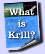 What is Krill?